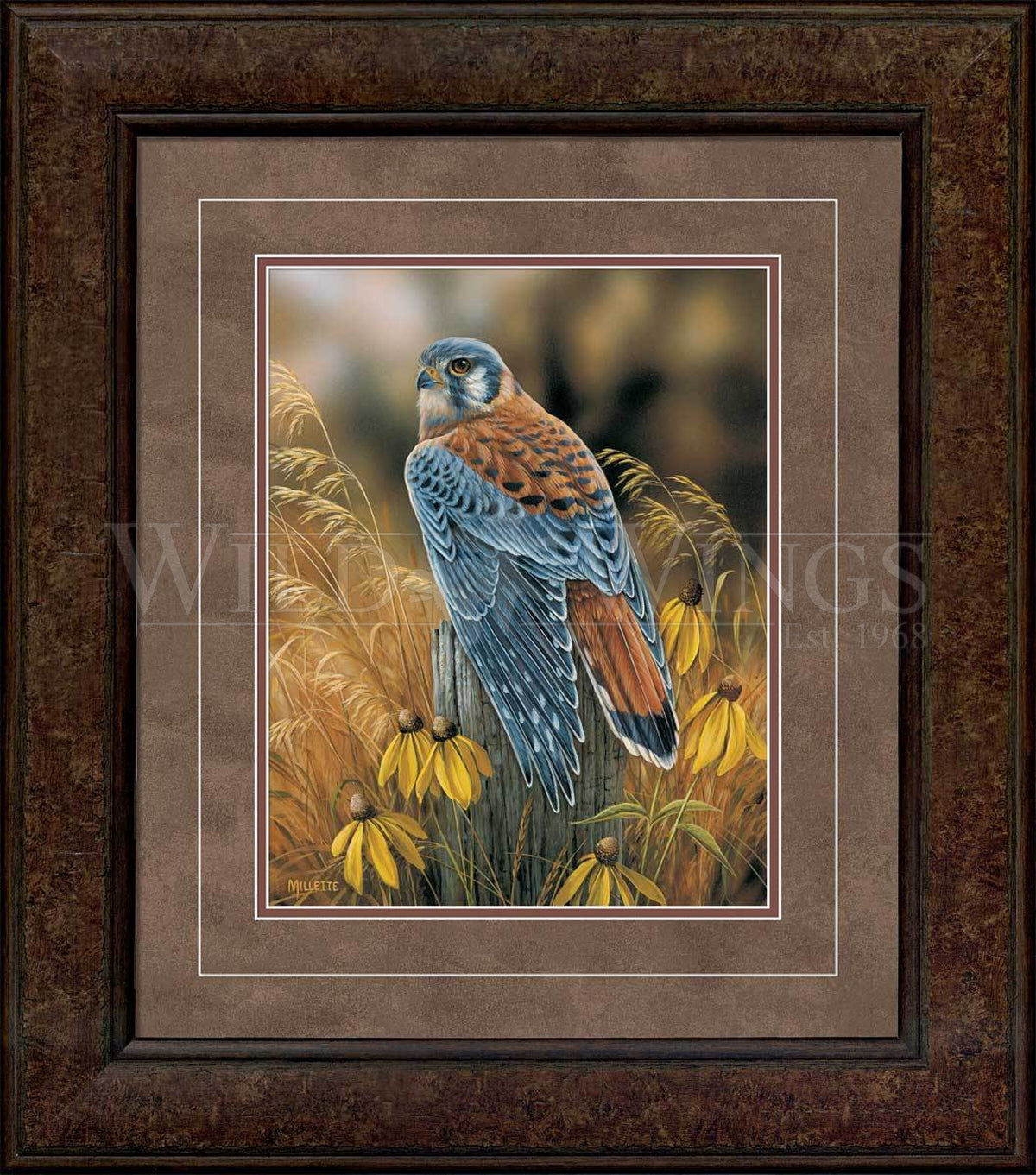 <I>Fencepost Perch&mdash;kestrel</i> Framed Print<Br/>22.75H X 19.75W Art Collection