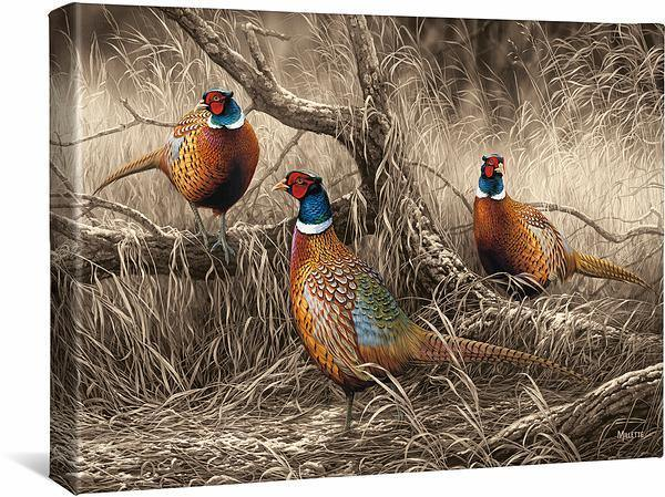 <I>First Dusting&mdash;pheasants</i> Gallery Wrapped Canvas
