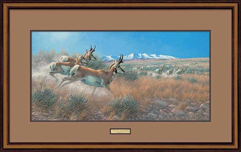<i>Flat Out&mdash;Pronghorns</i>