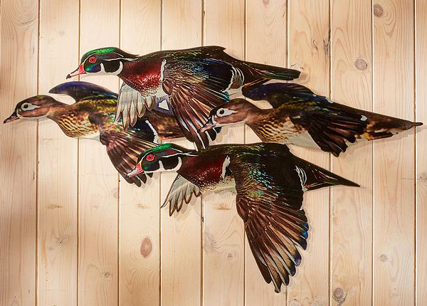 Wood Duck Flock Metal Wall Art