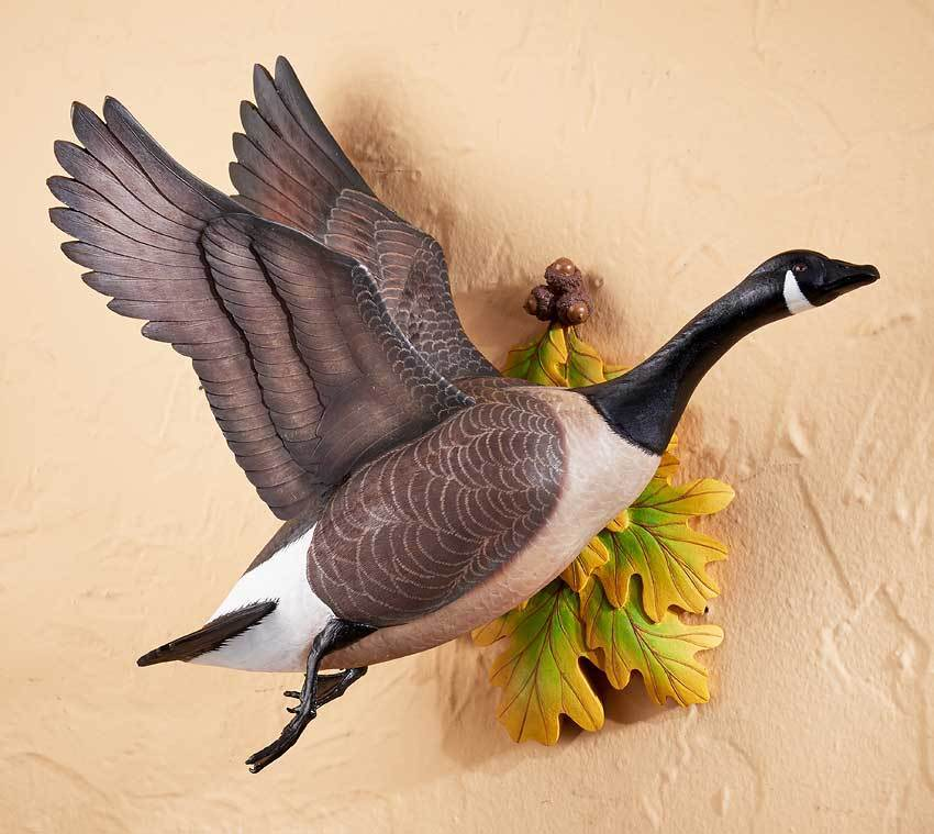 Flying Canada Goose