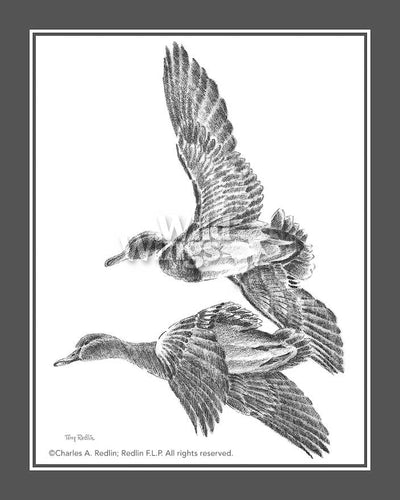 Flying Mallards Art Collection