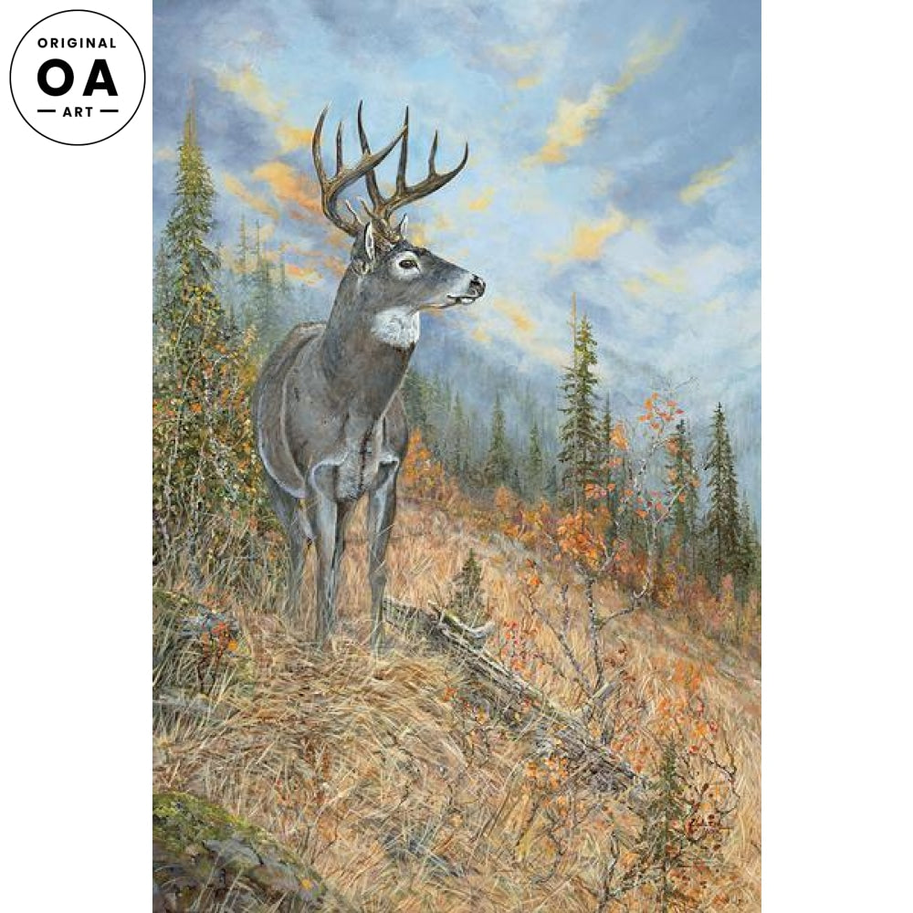 Following the Canyon Trail—Whitetail Deer Original Artwork