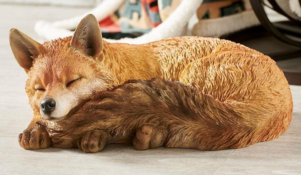 <i>Adult Sleeping Fox</i>