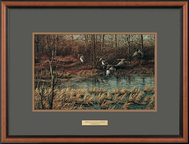 Apple River Mallards Art Collection