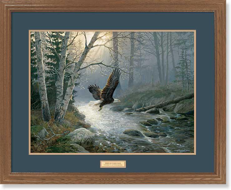 <i>Spring Run&mdash;Bald Eagle</i>