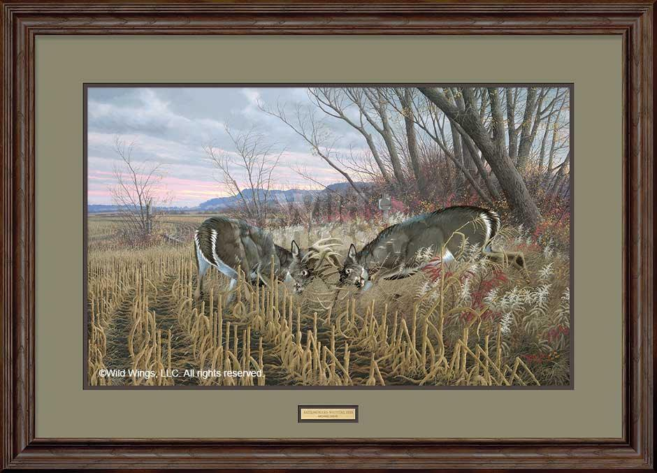 Battling Whitetails Art Collection