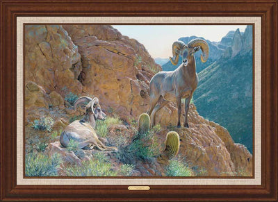 <I>Overseer&mdash;desert Bighorn Sheep</i> Framed Limited Edition Canvas<Br/>31.5H X 43.5W Art