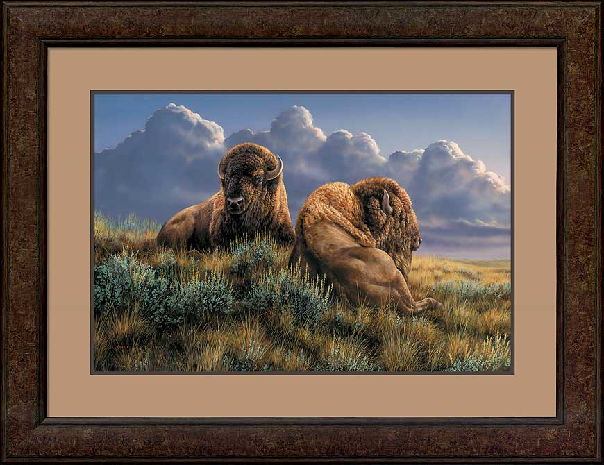 The Old Timers—Bison.