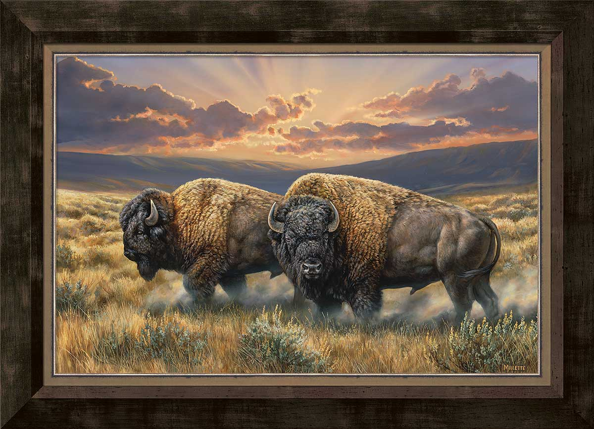Dusty Plains-Bison Art Collection
