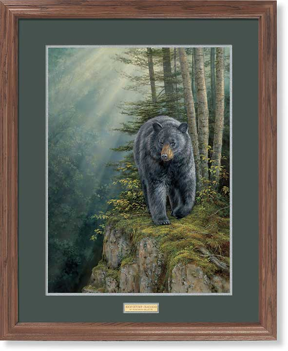 <i>Rocky Outcrop&mdash;Black Bear</i>