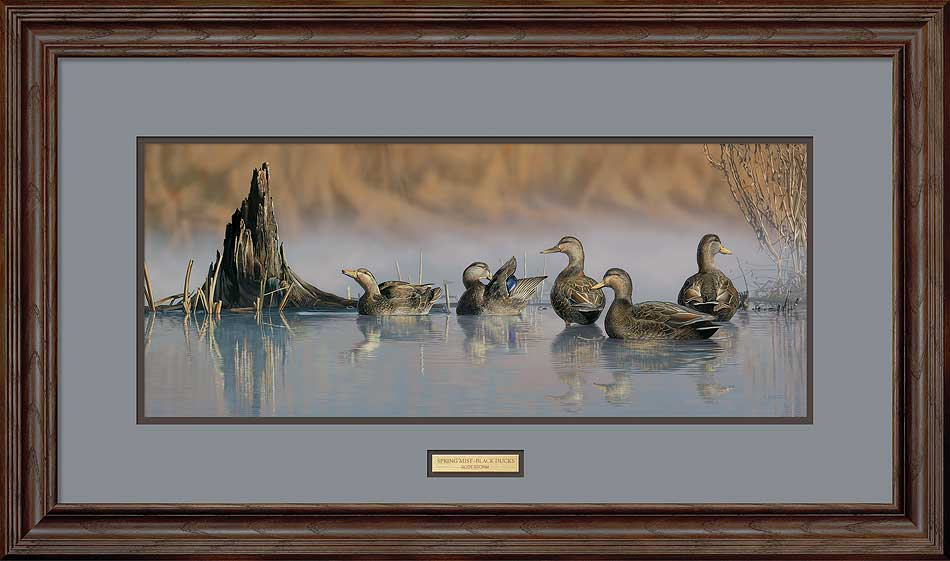 Spring Mist-Black Ducks Art Collection