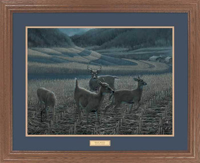 <I>Night Moves&mdash;whitetail Deer</i> Gna Premium Framed Print<Br/>25H X 31W Art Collection