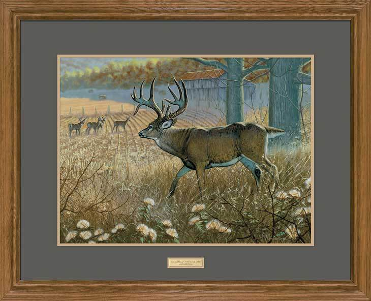 <i>Battlefield&mdash;Whitetail Deer</i>