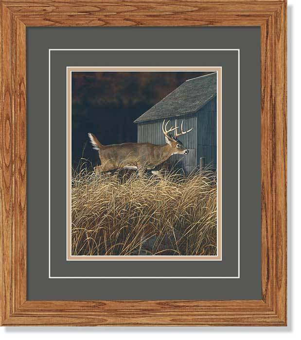 <I>Walking The High Life&mdash;whitetail Deer</i> Gna Deluxe Framed Print