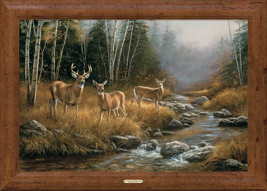 October Mist—Whitetail Deer