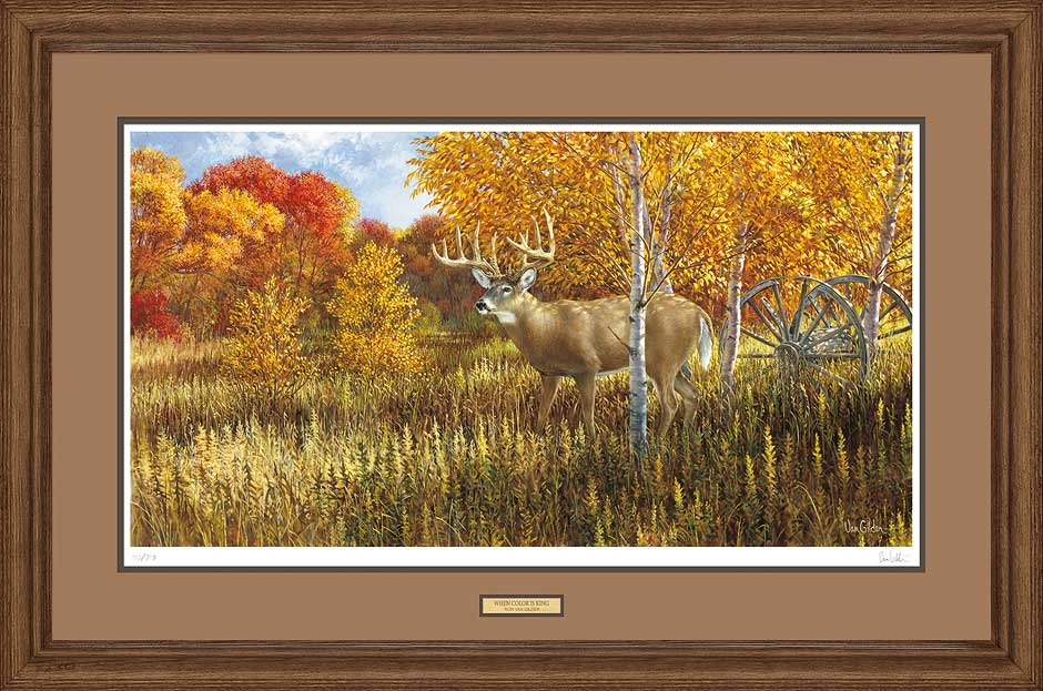 When Color is King-Deer Art Collection