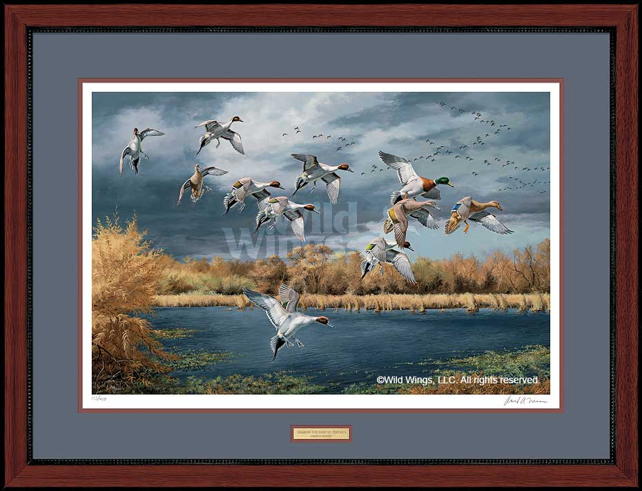 Sharing the Habitat-Ducks Art Collection