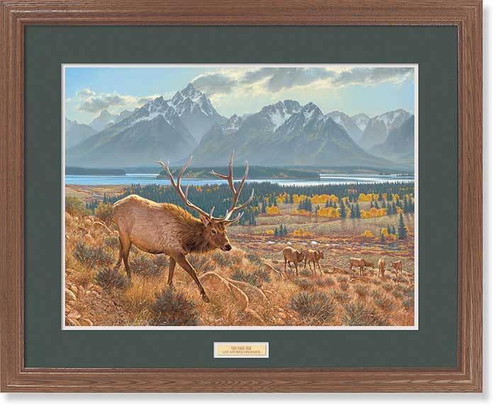 <I>Old Sage&mdash;elk</i> Gna Premium Framed Print<Br/>25H X 31W Art Collection