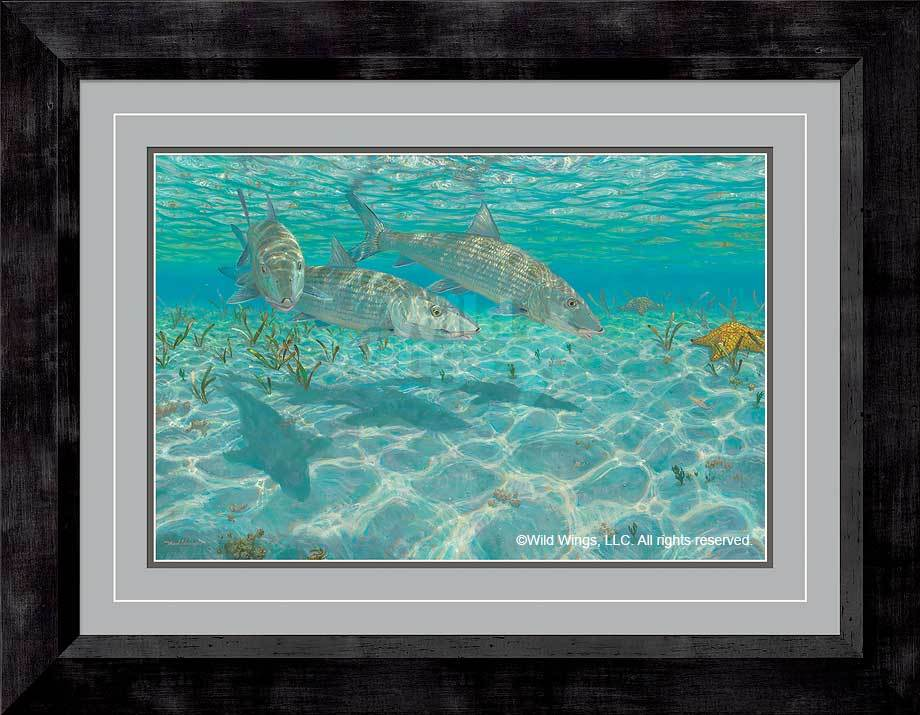 <I>Ghosts&mdash;bonefish</i> Framed Limited Edition Print<Br/>28H X 36W Art Collection