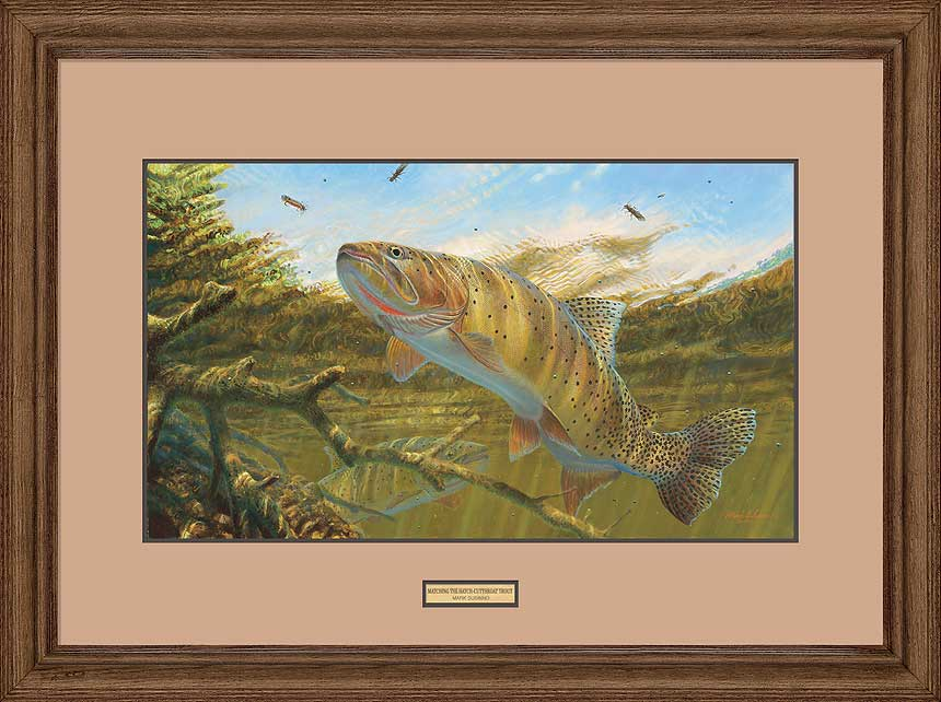 <i>Matching the Hatch&mdash;Cutthroat Trout</i>
