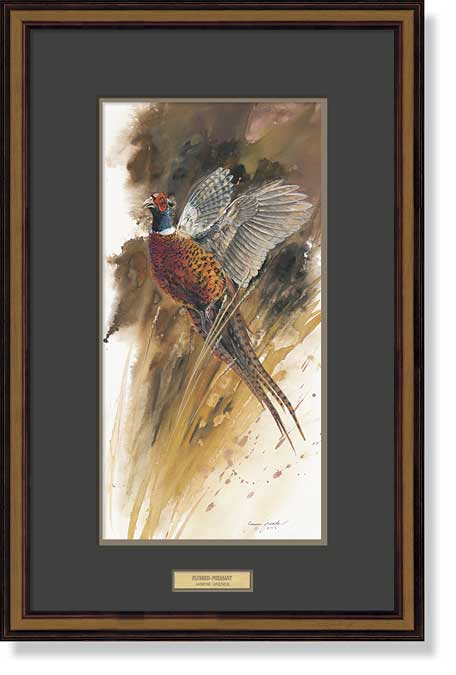 Flushed-Pheasant Art Collection