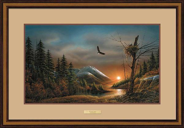 Flying Free Art Collection