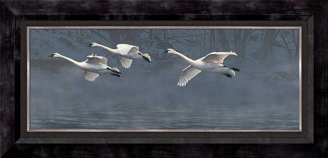 Nature's Grace-Flying Swans Art Collection