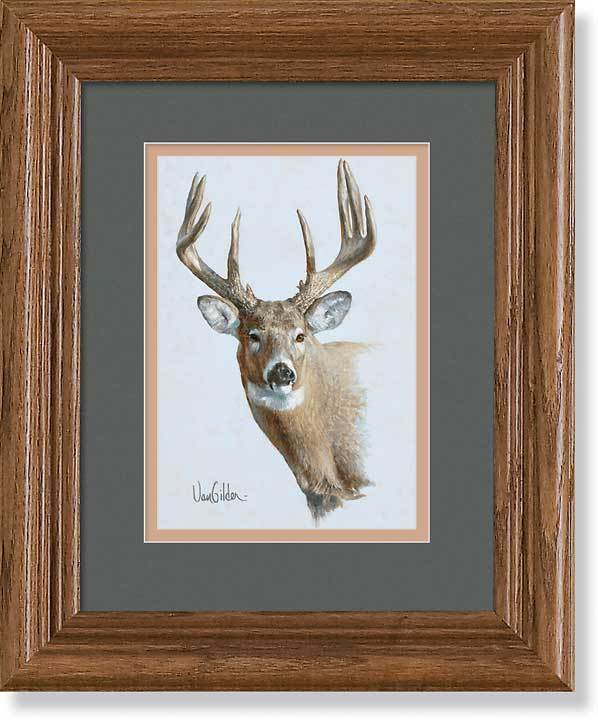 Whitetail Portrait Gna Mini Framed Print