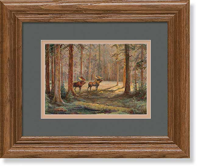 Black Bear & Moose Art Collection
