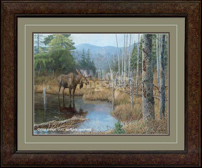 <I>Big Boy&mdash;moose</i> Framed Limited Edition Print<Br/>30H X 36W Art Collection