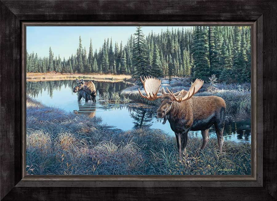 Now Showing-Moose Art Collection