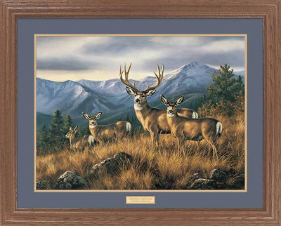 <I>Crossing The Ridge&mdash;mule Deer</i> Gna Premium Framed Print<Br/>25H X 31W Art Collection