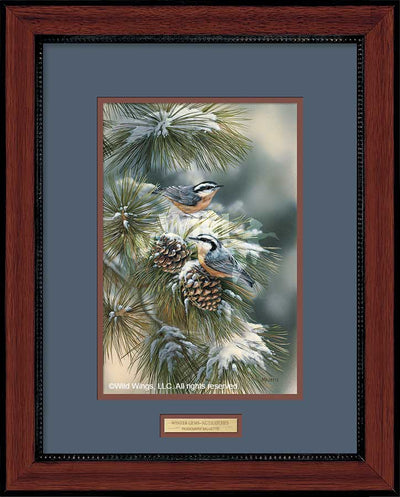Winter Gems-Nuthatches Art Collection