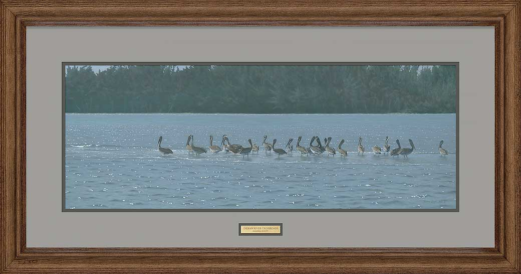 <i>Indian River Crossroads&mdash;Pelicans</i>
