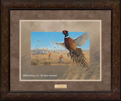 Great Game Birds—Pheasants.