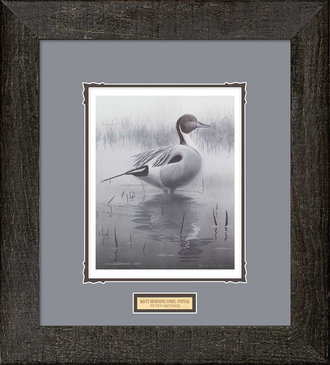 Misty Morning Sprig-Pintail Art Collection