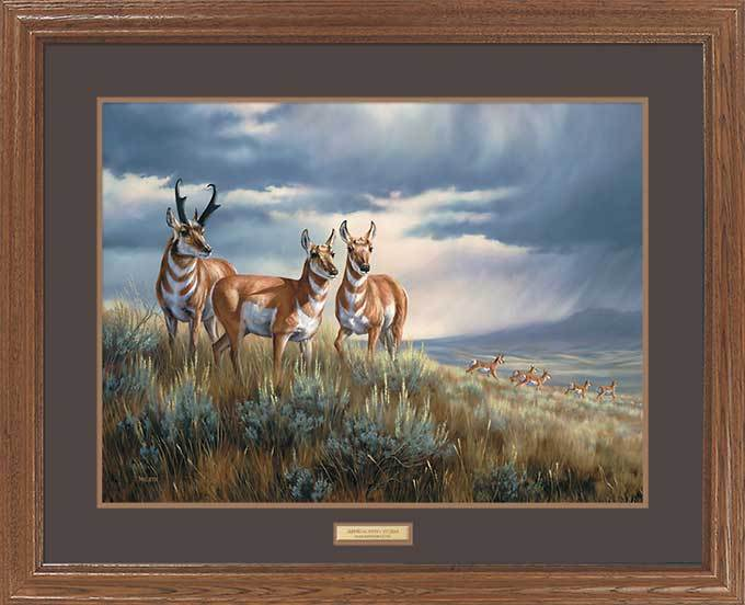 <I>Approaching Storm&mdash;pronghorns</i> Gna Premium Framed Print<Br/>25H X 31W Art Collection