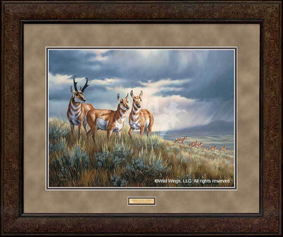 <I>Approaching Storm&mdash;pronghorns</i> Gna Premium+ Framed Print<Br/>29H X 35W Art Collection