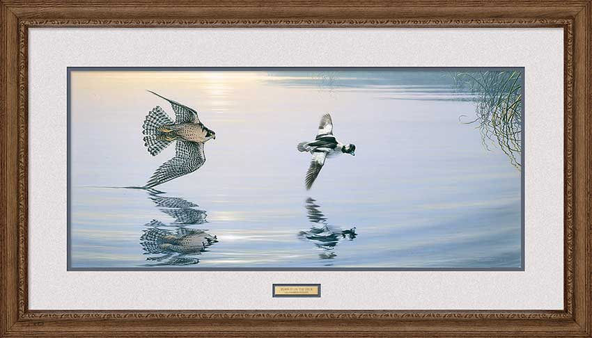 Pursuit on Deck-Peregrin Falcon Art Collection