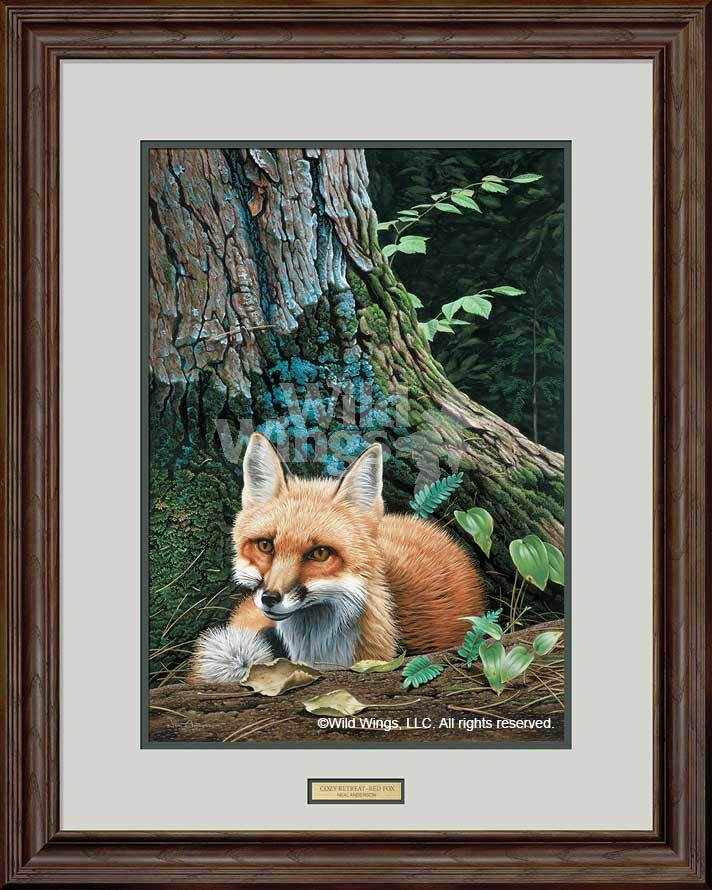 <I>Cozy Retreat&mdash;red Fox</i> Framed Limited Edition Print<Br/>30H X 24W Art Collection