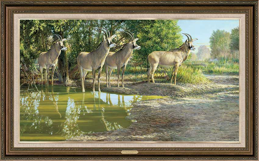 All Aglow-Roan Antelope Art Collection