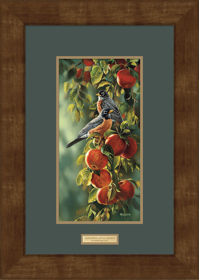 September Apples-Robins Art Collection