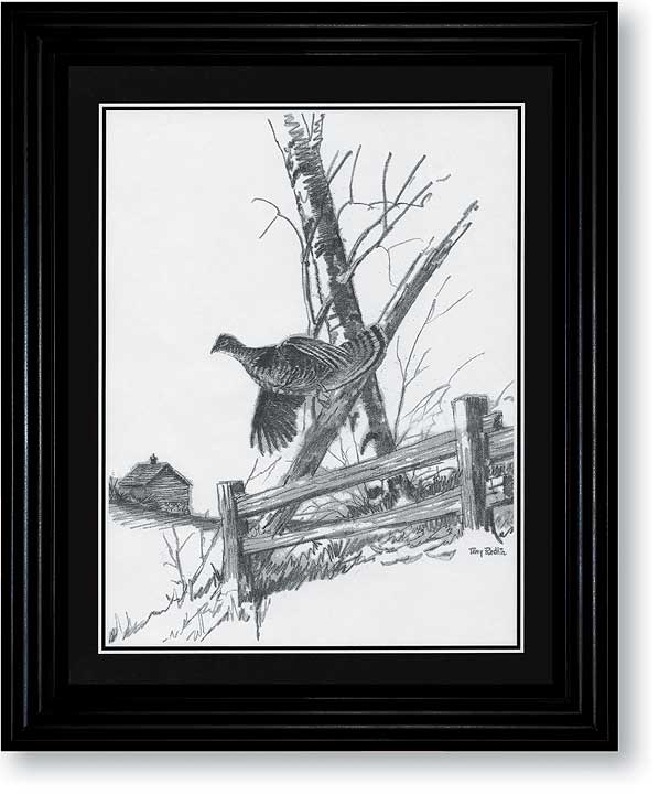 Ruffed Grouse Art Collection