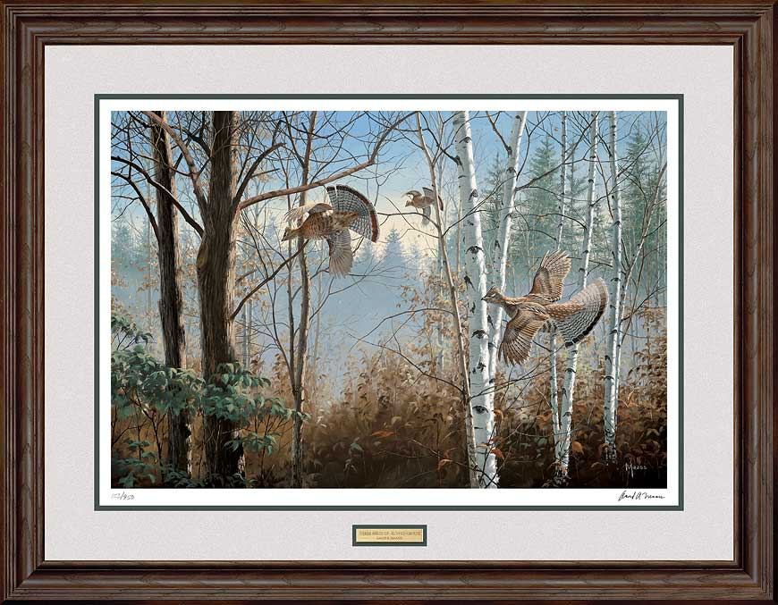 Three Birds Up-Ruffed Grouse Art Collection
