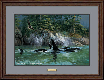 Sharing Spaces-Eagle & Orca Art Collection