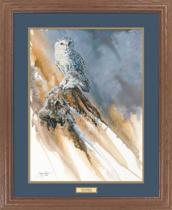 <I>Just Blew In&mdash;snowy Owl</i> Gna Premium Framed Print<Br/>31H X 25W Art Collection