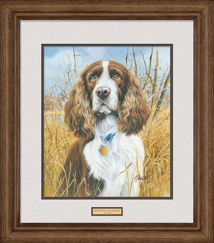 That's My Dog, Too!—Springer Spaniel.