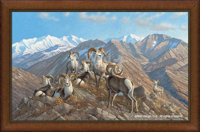 Stone Kings-Stone Sheep Art Collection