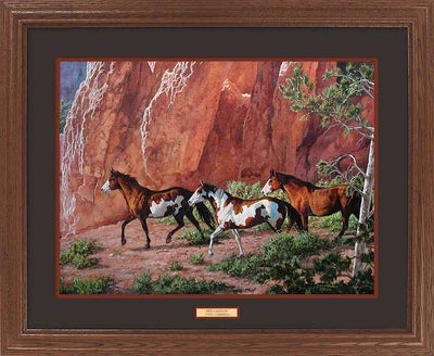 Red Canyon—Horses.
